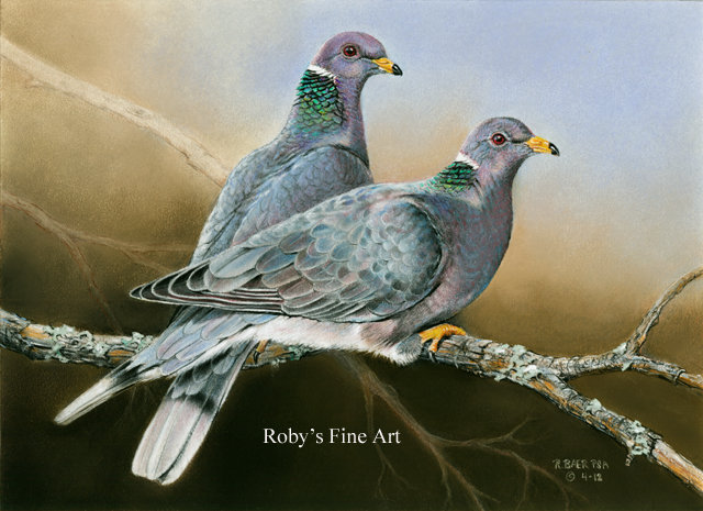 Pastel Band Tailed Pigeon Painting California Upland