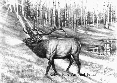 Quot Bugle Call Quot Graphite Drawing Of A Bull Elk By Roby Baer