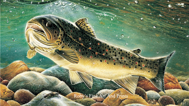 Pastel brown trout painting fish art by roby baer