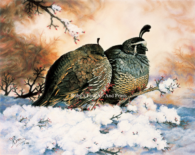 The California Quail  also  Quail Painting